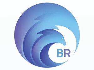 Logo Design – BR Investment